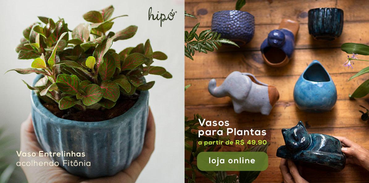 Hipo_Porque_todo_Mundo_Ama_Fitonias