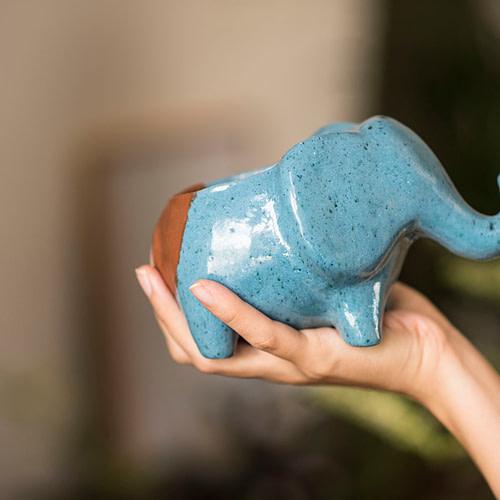 Hipó Vaso Planta Elefante Buda