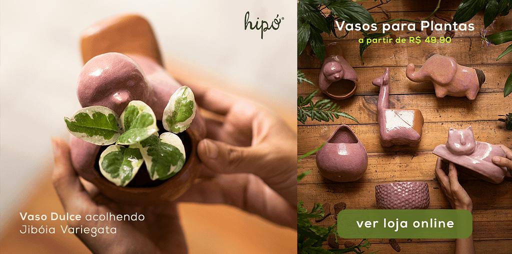 Hipo_Dicas_Escolher_Vasos_Certo_Plantas